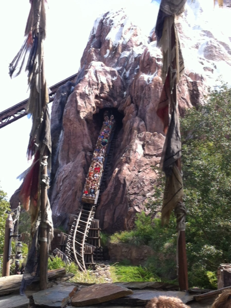 Best Attractions For Adults At Disney World S Animal Kingdom